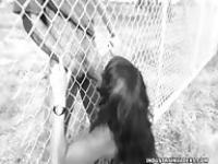 Ficken hinter Gittern