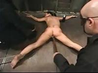 Zorra es castigada