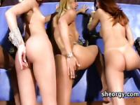 Naked busty transsexuals having an orgy party