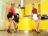 Classy hos pee in kitchen