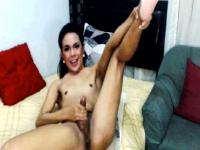 Hot Shemale Wanking her Cock