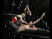 Las chicas Adrianna Nicole y Nina Hartley atan follando