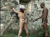 Mistress treating her slaves like animals