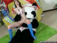 Panda mit einem 18 Jahre alten