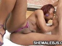 Ebony shemale Gyslene Rodrigues licking some nuts