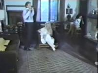 Best vintage sex movie from the Golden Time