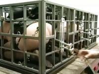 Hälterung und Transport von die neuen Sklaven