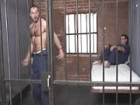 Muscle Bear in Cage