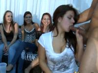 Dancingbear ernährt sich die Babes