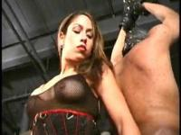 Vixens impitoyables 151 - flagellation