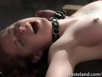 Tattooed slave is restrained and given orgasms by her mistress