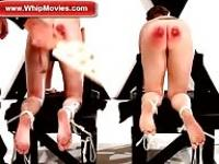 Painful whipping and spanking