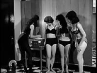 Workout-Classic Ladies