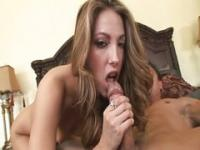 Jenna Haze small hot bitch