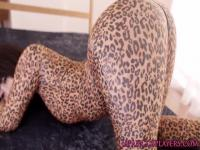 Cosplay Cheetah super-héros étant pussydrilled