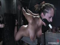 Trina Michaels will be tortured by Sasha Grey
