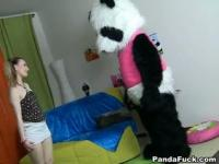 Dancing with the panda that has a pink dick