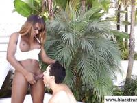 Black shemale amateur outdoors getting sucked