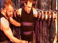 Hot muscular, hung studs gets his balls bashed in a CBT threesome.