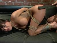 Tied brunette gets fingered and fucked