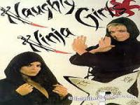 Naughty Ninja Girls