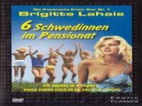 Orgy Sextbänder