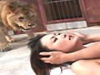 Sex Near A Deadly Lion