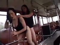 French sluts on the bus